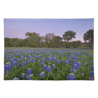 Texas Bluebonnetbordstablett Bordstablett