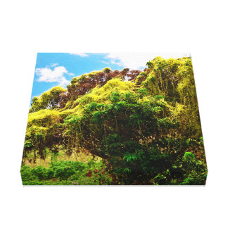 Thailändska träd canvastryck