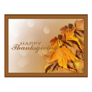 Thanksgivingdagvykort Vykort
