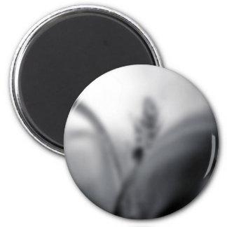 Themed Blur, en svartvit bild av ett oskarpt Magnet