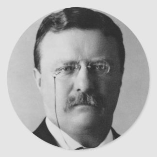 Theodore Roosevelt 26 Runt Klistermärke