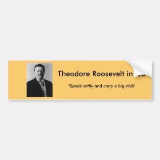 Theodore Roosevelt för president Bildekal