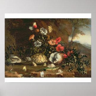 Thistles, blommor, reptilar och fjärilar beside poster