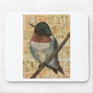 Throated Hummingbird för Ruby Musmatta
