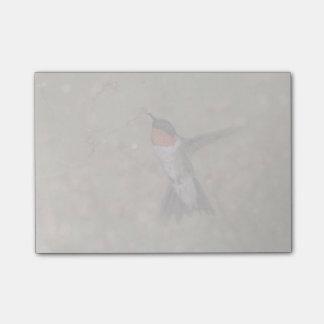 Throated Hummingbird för Ruby som dricker från en Post-it Block
