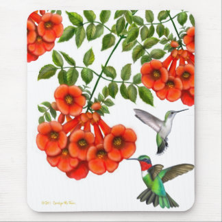 Throated Hummingbirds för Ruby på trumpetVine Musmatta