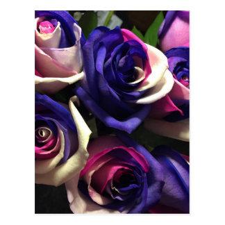 Tiefärgro: Vit, rosor och lilor Vykort