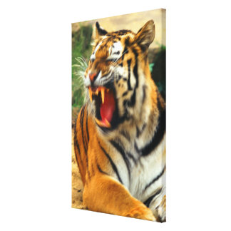 tiger canvastryck