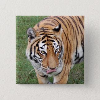 Tiger Friends-011 Standard Kanpp Fyrkantig 5.1 Cm