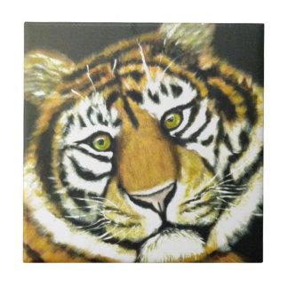 Tiger Kakelplatta