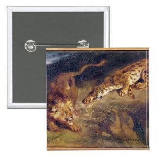 Tiger och lejont standard kanpp fyrkantig 5.1 cm