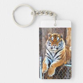 Tiger på ett staket nyckelring