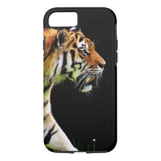 Tiger på svart