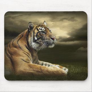 Tiger som tittar, och sitta under dramatisk himmel musmatta