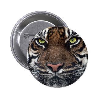 Tiger Standard Knapp Rund 5.7 Cm