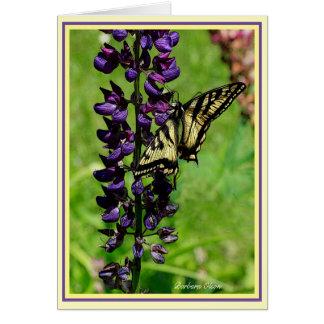 Tiger Swallowtail Hälsningskort