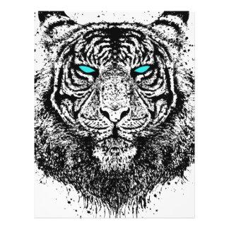 Tigerblick Brevhuvud