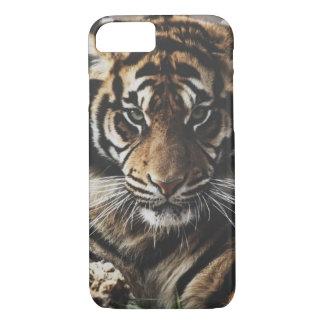 Tigerfodral