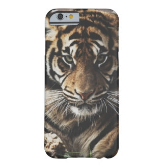 Tigerfodral Barely There iPhone 6 Fodral