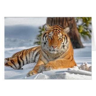 Tigerhelgdagkort Hälsningskort