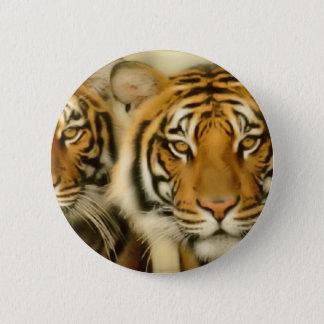 Tigerögon Standard Knapp Rund 5.7 Cm