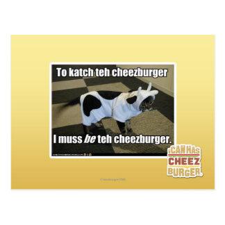 Till katch cheezburgeren vykort