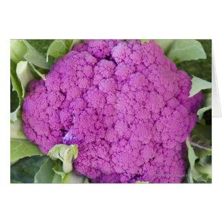 Till salu purpurfärgad blomkål hälsningskort