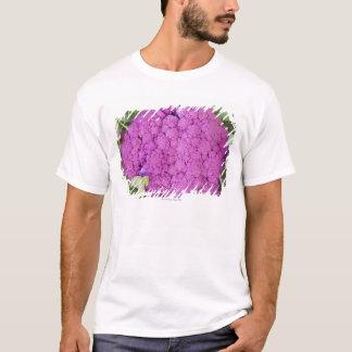 Till salu purpurfärgad blomkål tröja