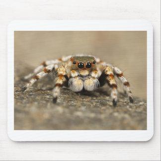 Tillbehör för fantastisk för spindel för musmatta