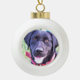 Add your favorite pet photo ornament