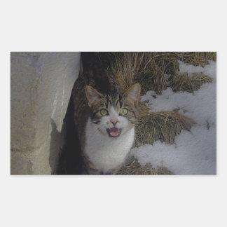 Tillfoga text till kattunge! retangel klistermärken