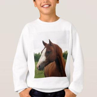 Tittar dig tee shirts