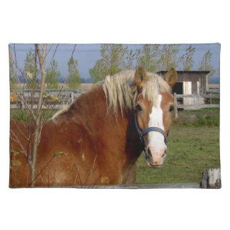 Tittar kamera-Aff för knäckar och för beige häst Bordstablett