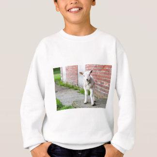 Tittar lambstativ nära tegelstenväggen t shirts