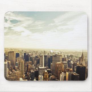 Tittar ut över den New York City horisonten Musmatta