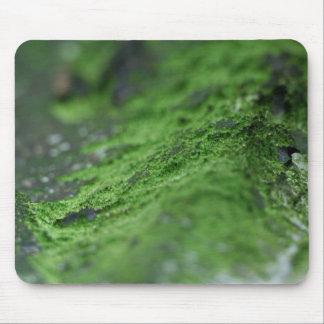 tjock grönt skummar mus mattor