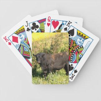 Tjur Spelkort