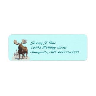 Tjurälgvadande i etiketter för snödjurlivnatur returadress etikett