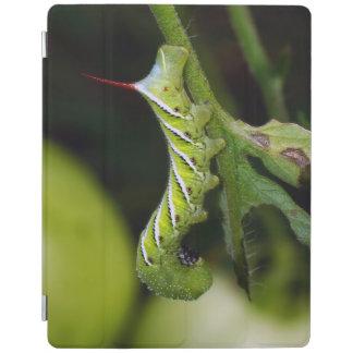 TobakHornworm Caterpillar ipad cover iPad Skydd