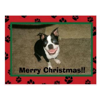 tobyxmascard god jul!! vykort