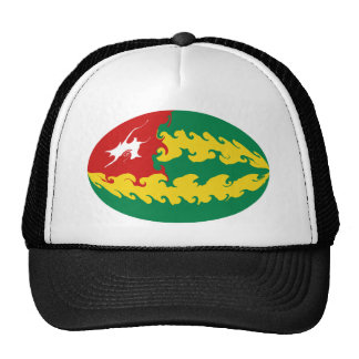 Togo Gnarly flaggahatt Keps