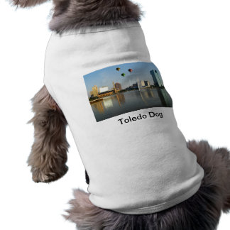 Toledo Ohio stad Hundtröja