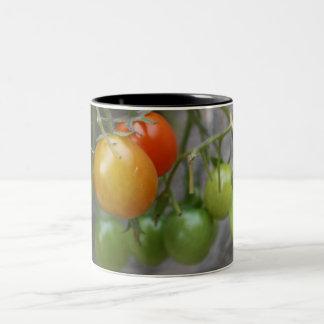 TomatPlantermugg Två-Tonad Mugg