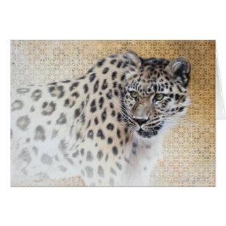 Tomt kort för Leopard av Andrew Denman