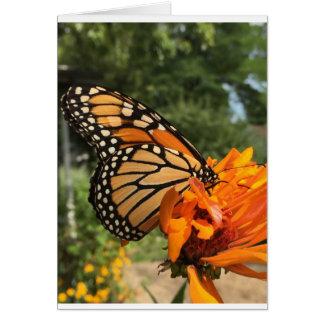 tomt monarkkort hälsningskort