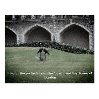 Torn av London Ravens Vykort