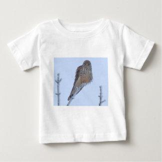 Tornfalk Tee Shirts