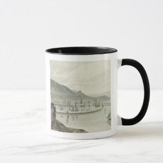 Torquay Devon, från volym VIII av 'en resa Arou