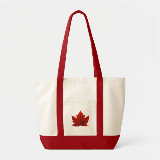 Totot för Enviro-Vänskapsmatchen Kanada souvenir h Tygkassar