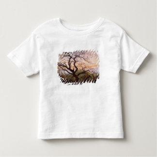 Träd av kråkor, 1822 tee